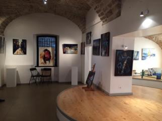 "Exposition ""Reflets"", salle Costantini - Millau, 2016"
